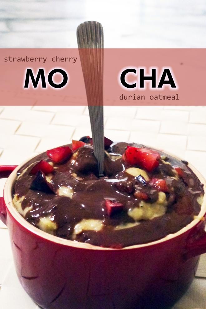 Oatmeal mocha strawberry cherry durian scottish steelies