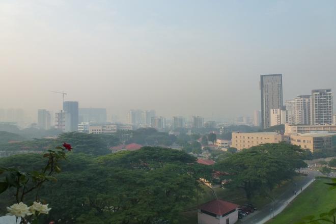TTSH haze
